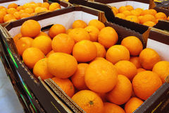 Mandarins in the boxes at the food store Stock Photography