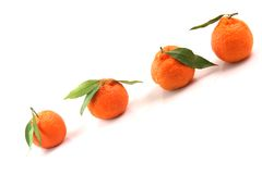 Mandarins with copy space Royalty Free Stock Images