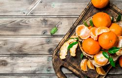 Mandarins on the cutting Board. On wooden background stock images
