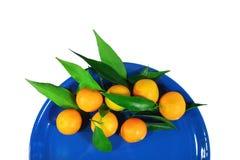 Mandarins on a dark blue plate Royalty Free Stock Photo