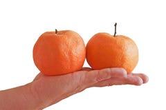 Mandarins in de palm stock fotografie