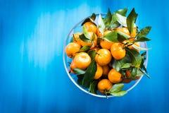 mandarins in een kom op een blauwe achtergrond Stock Foto