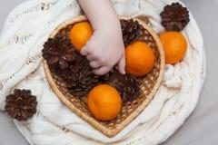 Mandarins en kegels in een Kerstmissamenstelling Stock Afbeelding