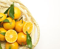 Mandarins with green leaves in a pad Royalty Free Stock Photos