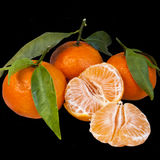 Mandarins isolated on black Royalty Free Stock Image