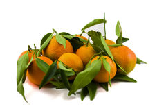 Mandarins with leafs. Isolated Mandarins on white background with leafs Stock Images