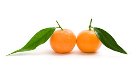 Mandarins with leaves Stock Photography