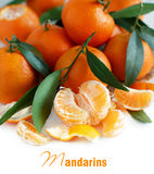Mandarins with leaves Stock Images