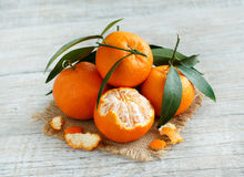 Mandarins with leaves Royalty Free Stock Photography