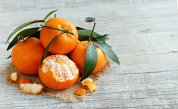 Mandarins with leaves Stock Image
