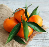 Mandarins with leaves Royalty Free Stock Photo