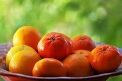 Mandarins Mandarijnenclose-up Royalty-vrije Stock Afbeeldingen