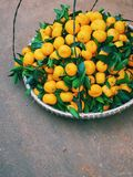 Mandarins on the market of Dalat in Vietnam Royalty Free Stock Images