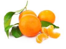 Mandarins met bladeren stock afbeelding