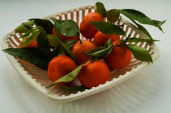 Mandarins met groene bladeren in een witte authentieke fruitvaas Royalty-vrije Stock Afbeeldingen
