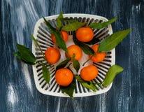 Mandarins met groene bladeren in een witte authentieke vaas voor fruit op een blauwe achtergrond Royalty-vrije Stock Afbeeldingen
