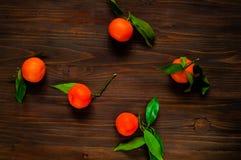 Mandarins met groene bladeren op een donkere houten achtergrond, close-up, hoogste mening, concept oranje vruchten Royalty-vrije Stock Afbeeldingen
