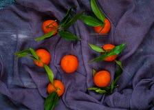 mandarins met groene bladeren op een violette achtergrond Stock Afbeeldingen
