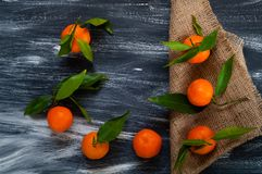 Mandarins met groene bladeren op jute op een donkere houten achtergrond, hoogste mening, lege ruimte voor tekst Stock Afbeelding