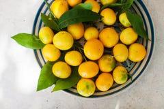 Mandarins op plaat met bladeren stock afbeelding