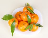 Mandarins on the plate Stock Photography