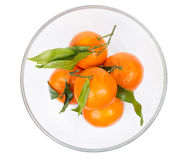 Mandarins in plate Stock Photography