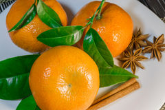 Mandarins on a plate. Fresh mandarins on the white plate with spice royalty free stock photos