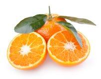 Mandarins Royalty Free Stock Image
