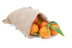 The mandarins in the sack Royalty Free Stock Photography