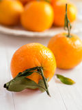 Mandarins with sheets Stock Photography