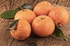 Mandarins tangerines still life toned image vintage style Stock Image