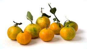 MANDARINS TANGERINES Stock Photography