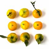 MANDARINS TANGERINES Royalty Free Stock Photo