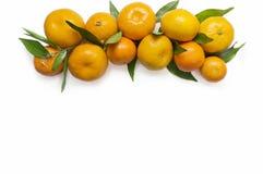 mandarins Tangerinnärbild på en vit bakgrund Royaltyfri Bild
