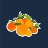 Mandarinuppsättning Fotografering för Bildbyråer