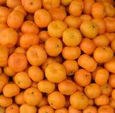 Mandaryn pomarańcze owoc zamknięta w górę fotografia stock