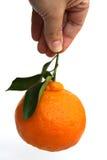 mandarynka świeżych owoców Zdjęcia Stock