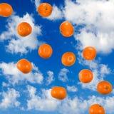 mandarynka na nieba tle zdjęcia royalty free