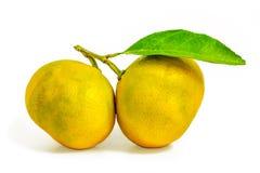 mandarynka z zielonym liściem odizolowywającym na białym tle obrazy royalty free
