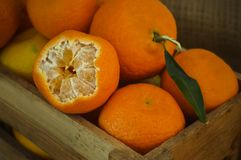 mandarynki świeża pomarańcze Obraz Royalty Free