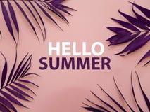 Mande un SMS HOLA al VERANO y al color púrpura del amaranto tropical de las hojas imagen de archivo