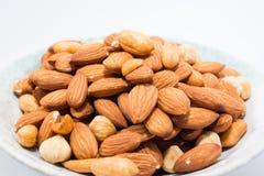 Mandel-Erdnuss und Haselnüsse Stockbild