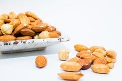 Mandel-Erdnuss und Haselnüsse Lizenzfreies Stockfoto