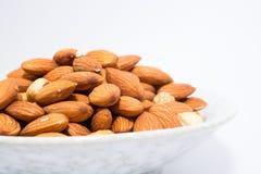 Mandel-Erdnuss und Haselnüsse Lizenzfreies Stockbild