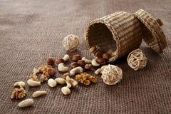 Mandeln, Acajoubaum, Walnüsse und Haselnüsse Stockfotos