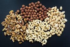Mandeln, Acajoubaum, Walnüsse und Haselnüsse Lizenzfreies Stockfoto
