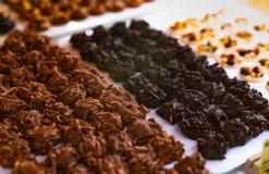 Mandeln täckte mörk choklad och mjölkar choklad på den vita plattan Sund mörk chokladmandeltugga Högt - protein och kolhydrat royaltyfria bilder