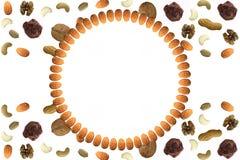 Mandeln vereinbarten in der weißen Steigungsplatte des Kreises mit verschiedenen trockenen Fruchtnüssen und im abstrakten Muster  Stockfotografie