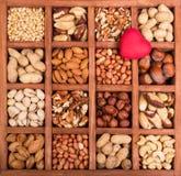 Mandeln, Walnüsse, Erdnüsse, Acajoubaum und Haselnüsse Lizenzfreie Stockfotografie