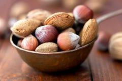 Mandeln, Walnüsse und Haselnüsse in der metallischen Schüssel Stockfoto